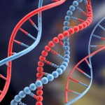 dna_all8f81b400-55aa-4126-94c0-6e3ead009a2clarge