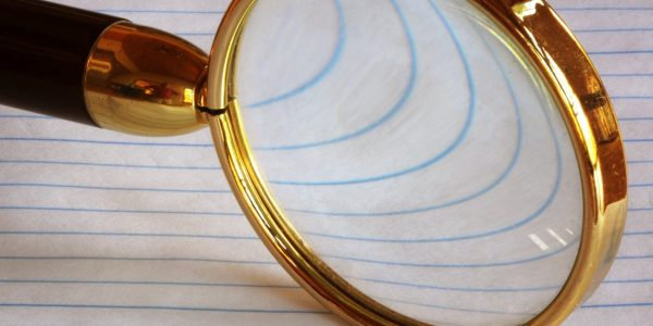 What is a company like due diligence