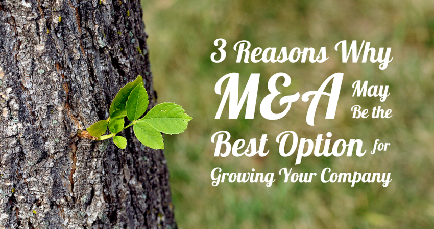 3 Reasons why M&A may be the best option for growing your company